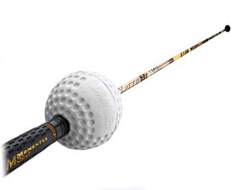 speed woosh - golf training aid